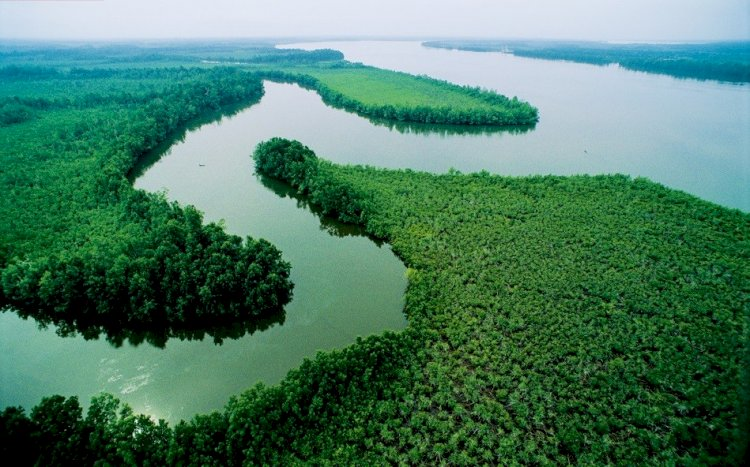 Economic value of the Niger River and its source