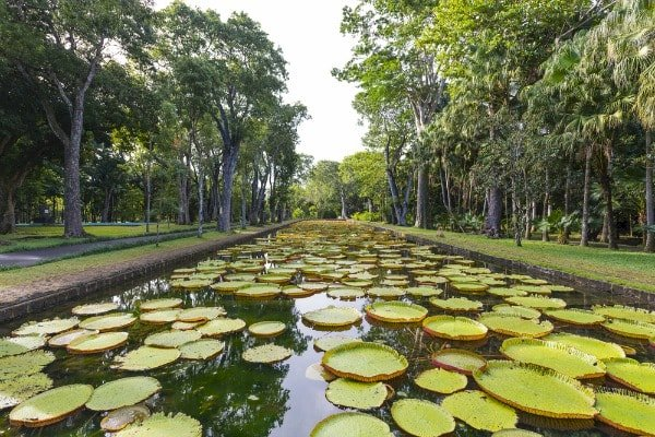 10 Most Beautiful Gardens in Africa