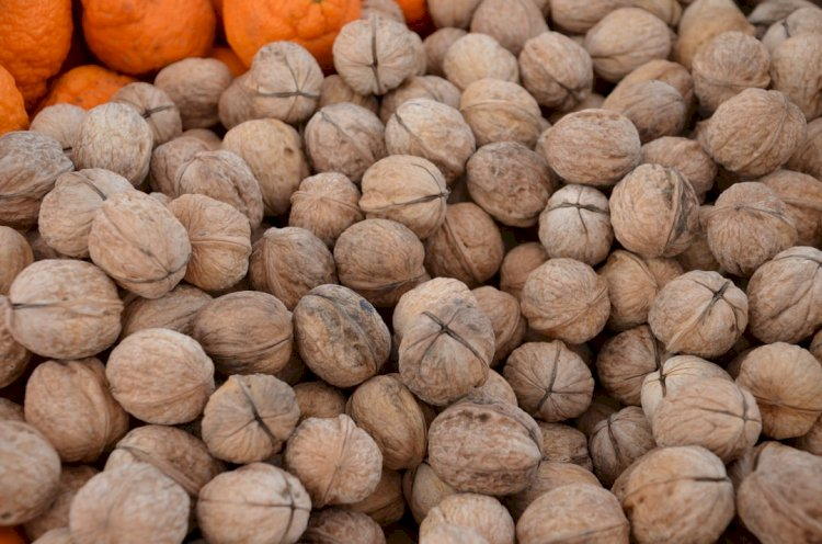 Health Benefits Of Eating Kola Nut